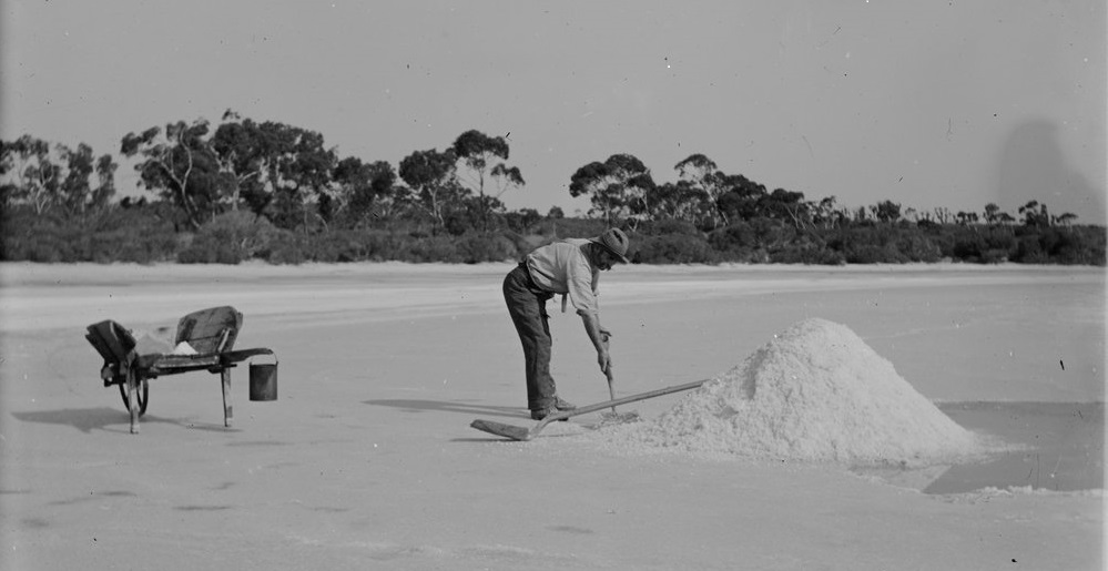 1920 salt lake harvest. Harvesting salt like this replaced early salt-making operations.