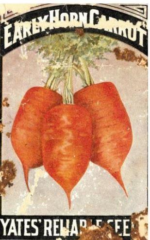 yates carrots